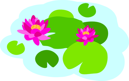 pad  lily: Water lilies are beautiful in a spring pond.  Use this image in your next design.