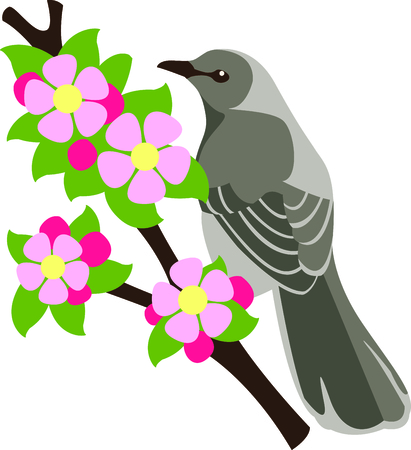 apple blossom: This apple blossom with a Mockingbird is a beautiful image to add to your design. Illustration