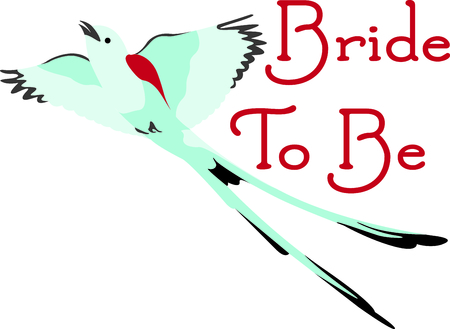 birder: Birds are fascinating animals.  This is a perfect gift for a favorite birder you know.  They will love it!