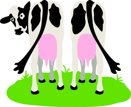 holstein: Wisconsin is known for dairy.  This image will be perfect for your design.