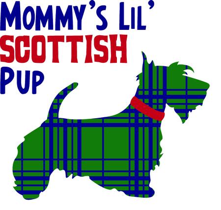 このかわいいスコティッシュ テリアを表示することによってあなたの遺産を祝います。