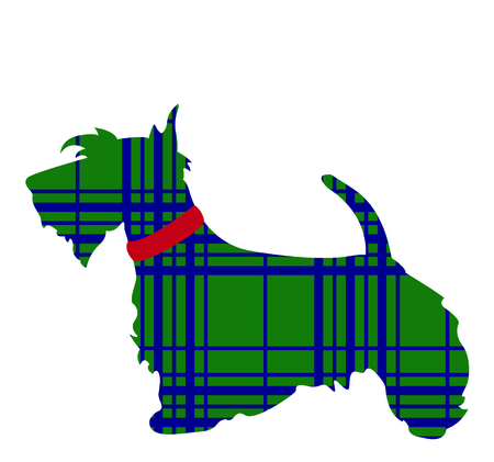 Celebrate your heritage by displaying this cute Scottish Terrier.