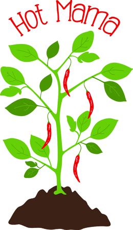 당신의 뜰을 만드는 디자인에있는 고추 식물의이 심상을 사용하십시오.