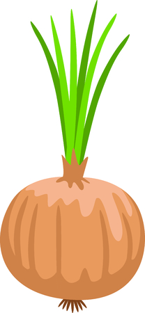 Use this image of a onion plant in your gardening design.