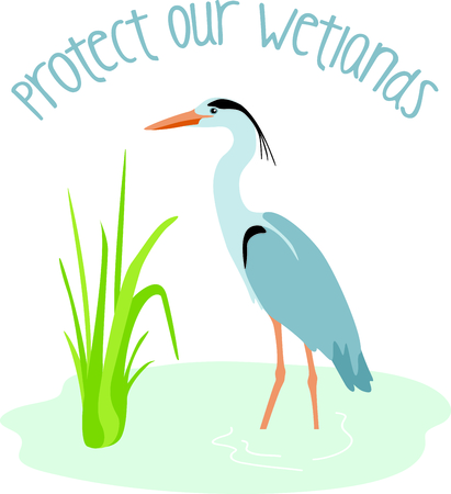 Use this image of a Great Blue Heron in your design. Illustration