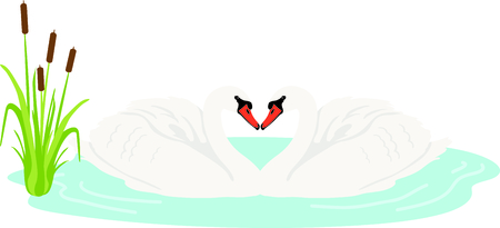cattail: Get this swan image for your next design. Illustration