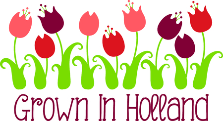 Remember the trip to Holland with this tulip row. 向量圖像