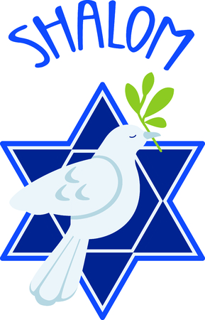 Celebrate your faith with this dove of peace and star of David.