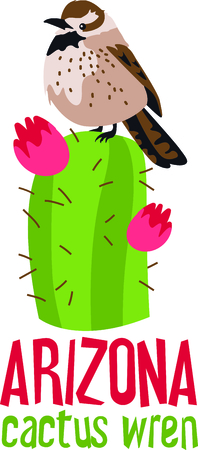 carnegiea: Use this image of a Cactus Wren in your next design. Illustration