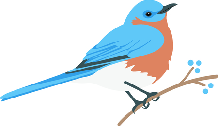 fruit tree: Use this image of a Bluebird in your next design. Illustration