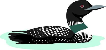 Use this image of a loon in your next design. Illustration