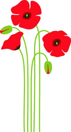 양귀비 꽃은 기억의 상징입니다. 이 간단하면서도 아름다운 꽃다발은 아름다운 알림입니다. 일러스트