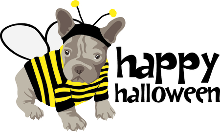 dog costume: This cute puppy dressed up in a costume is the perfect design for a Halloween party.