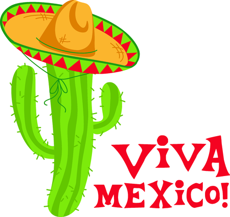 desert vegetation: Cactus sombrero is the perfect image for your next fiesta.