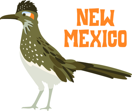 Use this image of a Roadrunner in your next design.