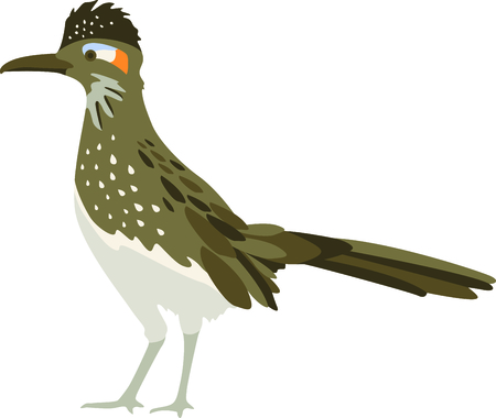 greater: Use this image of a Roadrunner in your next design.
