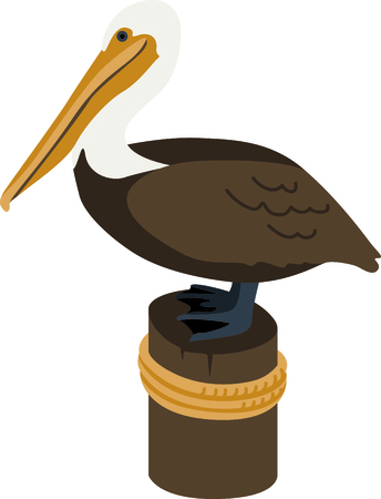 Use this image of a Brown Pelican in your next ocean design.