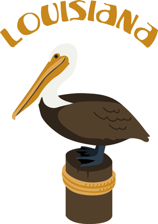 pelican: Use this image of a Brown Pelican in your next ocean design.