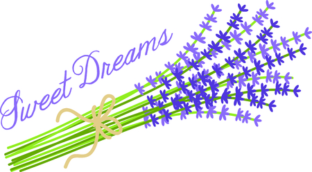 bushel: Use this image of sprigs of lavender in your next design.