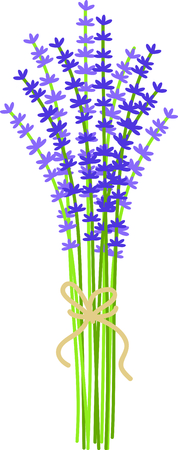Use this image of sprigs of lavender in your next design.