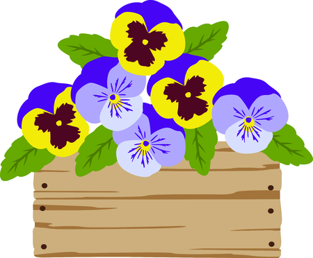 viola: This box flower design will look lovely as a linen border or apron decor.