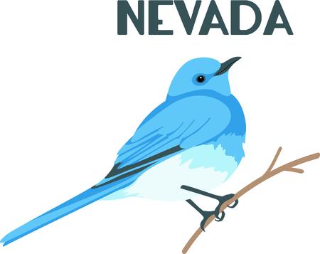 다음 디자인에 블루 버드의 이미지를 사용합니다. 일러스트