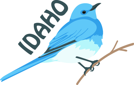 Use this image of a Bluebird in your next design. Illusztráció