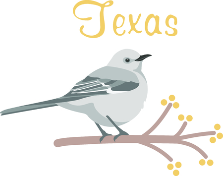 Use this image of a Mockingbird in your next design. Иллюстрация