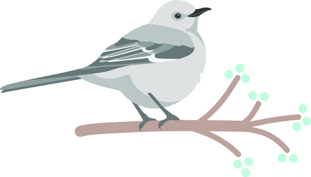 fruit tree: Use this image of a Mockingbird in your next design. Illustration