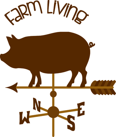 weather vane: Pointing weather vane arrow with a pig on top.