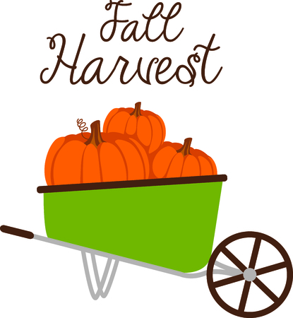 fall harvest: Fall is the season to give thanks for the harvest of pumpkins.