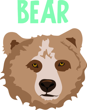 cubby: Show your team spirit with this bear  Illustration