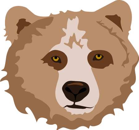 Show your team spirit with this bear  Ilustrace