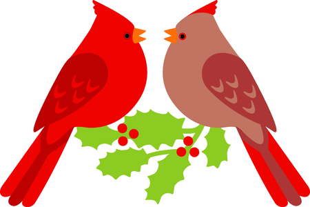 Cardinal pair for the bird lover at Christmastime. Illustration