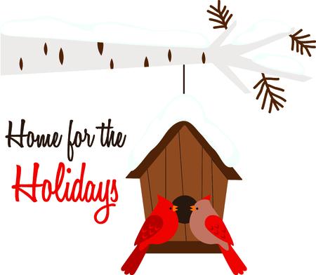 겨울 자신의 birdhouse에 매달려 추기경 시즌을위한 좋은 디자인을 만든다.