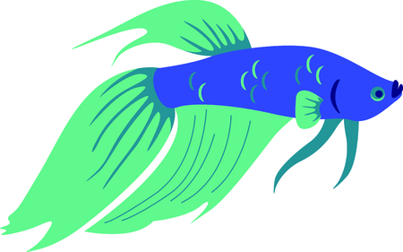 fighting fish: This fierce fighting fish stitches out perfectly onto your special embroidery projects.  For a fun idea stitch him onto your soft side fishing lure box. Illustration
