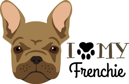 Have a french bulldog friend with you always with this little dog.