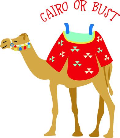 Vier Egyptische cultuur met een woestijn kameel.