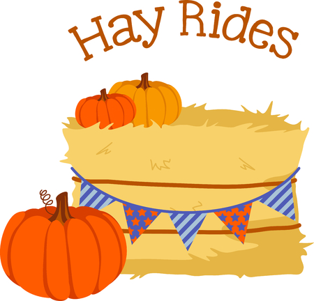 hay bales: Fall is the season to give thanks for the harvest of pumpkins.