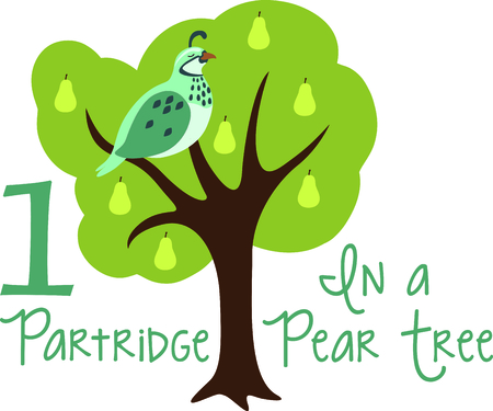 A Partridge In Pear Tree Favorite Holiday Song The Tweleve Days Of Christmas First Day