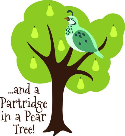 Een favoriete vakantiebestemming nummer, The tweleve Days of Christmas. De eerste dag, een patrijs in een perenboom.