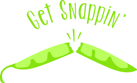 snapping: Snapping green bean for your home kitchen decor or as a gift.