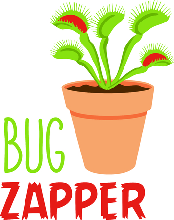 Use this fly trap plant to catch those pesky critters.