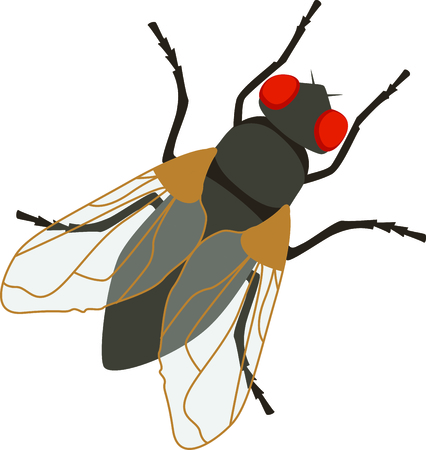 Red eyed fly for your pesty projects.