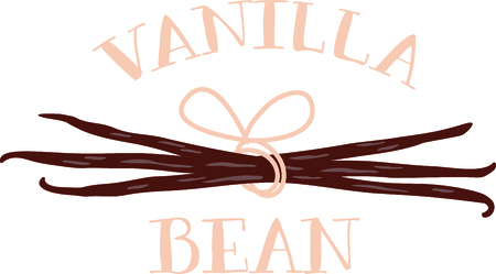 vanilla: Vanilla bean pods tied together with a pink bow.