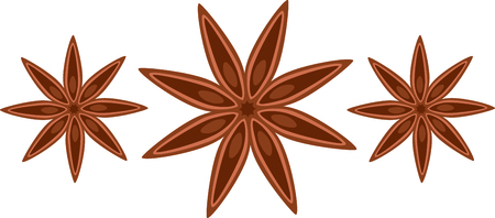 star anise: Star anise seed pod for the culinary aficionado.