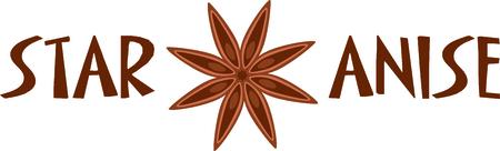 Star anise seed pod for the culinary aficionado.