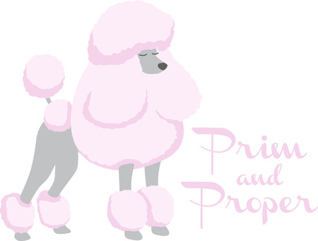 animal lover: A pink poodle is a great dog for an animal lover. Illustration