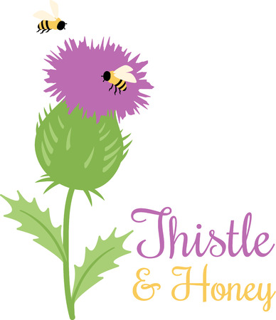 buzzing: Purple thistle surrounded by happily buzzing bees.