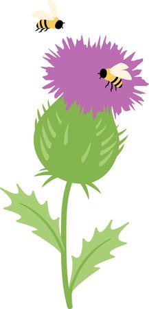 행복 윙윙 꿀벌에 의해 둘러싸여 보라색 엉겅퀴.